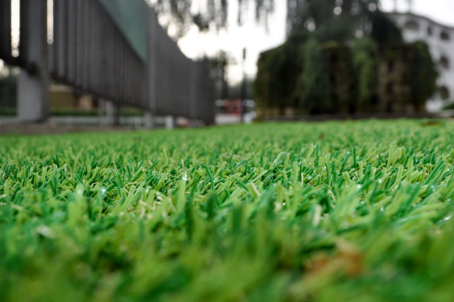 Synthetic grass – The origins
