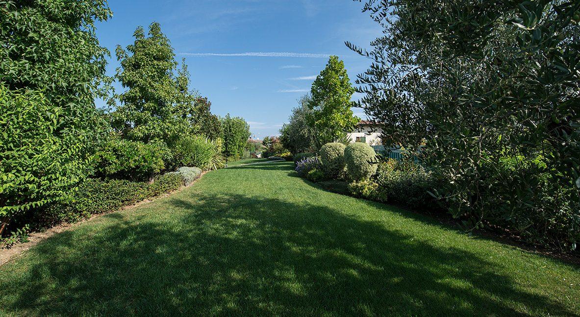 Progettazione e Realizzazione Giardino a Erba