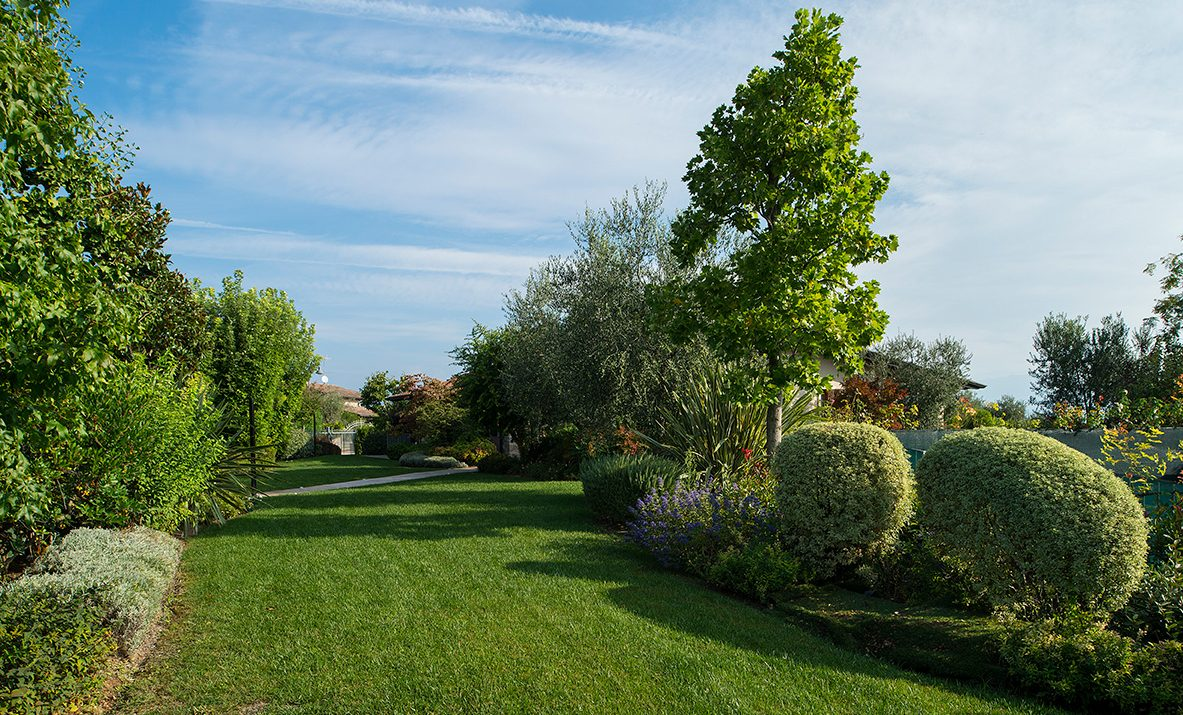 Progettazione e Realizzazione Giardino a Tortona